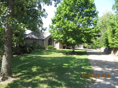 1003 Silvercrest Place, Reeds Spring, MO 65737 - MLS#: 60055559