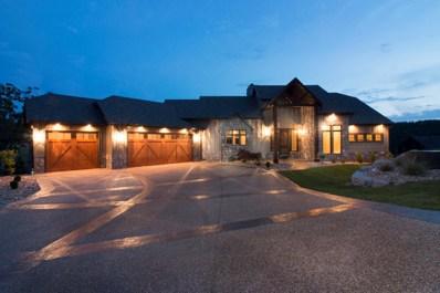 331 Point Pinnacle Drive, Lampe, MO 65681 - MLS#: 60102214