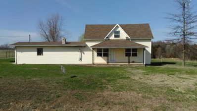 1115 E Evergreen Street, Strafford, MO 65757 - MLS#: 60103320