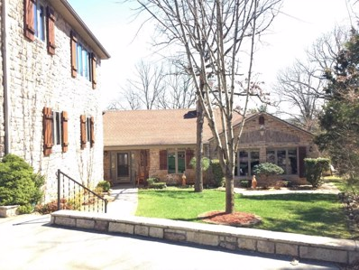 4 Trails End Street, Reeds Spring, MO 65737 - MLS#: 60104044