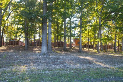 26 Cave Lane UNIT Cabin 12, Indian Point, MO 65616 - MLS#: 60106776
