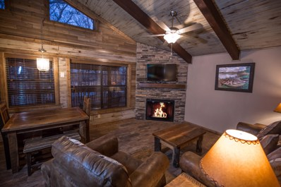26 Cave Lane UNIT Cabin 20, Indian Point, MO 65616 - MLS#: 60106782