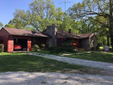 11832 State Route 17, West Plains, MO 65775 - MLS#: 60107920