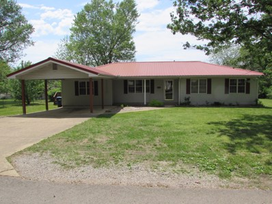 313 Quaker Avenue, Houston, MO 65483 - MLS#: 60108135