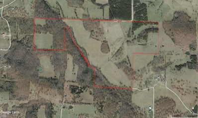 22500 E 480th Road, Humansville, MO 65674 - MLS#: 60113308