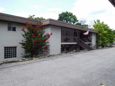 165 Port Holiday One, Kimberling City, MO 65686 - MLS#: 60113351