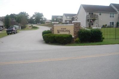 133 Birchwood Circle, Branson, MO 65616 - MLS#: 60113669
