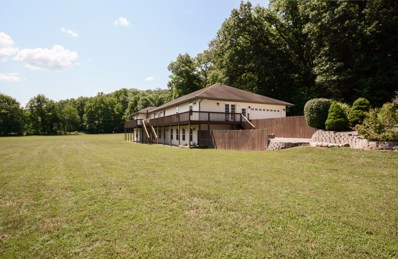 1115 Bear Creek Road, Walnut Shade, MO 65771 - MLS#: 60114239