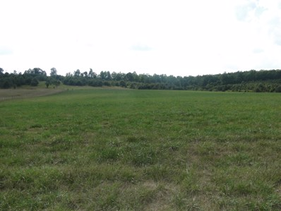 13200 County Road 8770, West Plains, MO 65775 - MLS#: 60117842