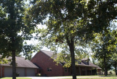 7777 State Route 17, West Plains, MO 65775 - MLS#: 60117975