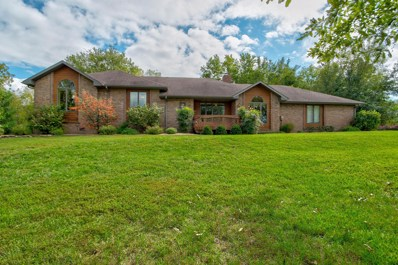 4162 State Hwy Zz, Clever, MO 65610 - MLS#: 60120478