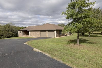 585 Ghan Road, Clever, MO 65631 - MLS#: 60121174