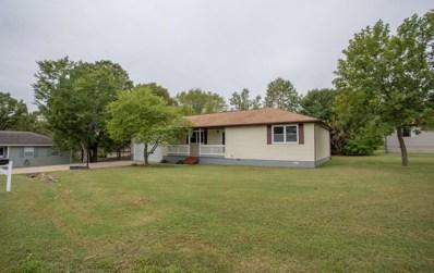 168 White Drive, Branson, MO 65616 - MLS#: 60121426