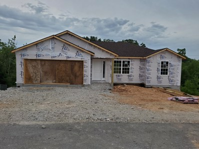 470 Holts Lake Drive, Branson, MO 65616 - MLS#: 60121819