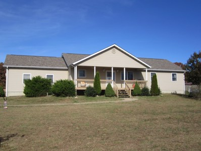 13235 Highway C, Licking, MO 65542 - MLS#: 60122395