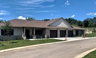 106 Vista View Drive UNIT B9 L, Branson, MO 65616 - MLS#: 60122452