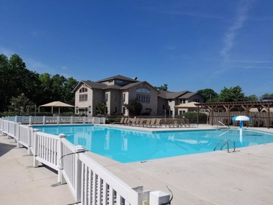123 Bunker Ridge Drive UNIT 10, Branson, MO 65616 - MLS#: 60123170