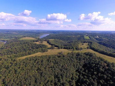 Tbd  State Highway 248, Galena, MO 65656 - MLS#: 60123561