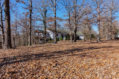 311 Tree Line Road, Walnut Shade, MO 65771 - MLS#: 60123905