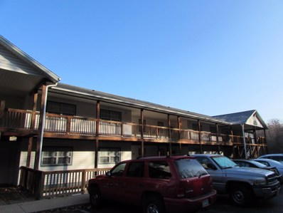 250 Berry Dr UNIT 16, Branson, MO 65616 - MLS#: 60124824