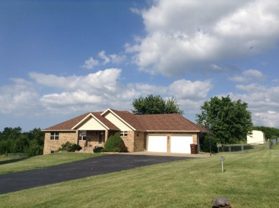 900 Country Meadows Road, Highlandville, MO 65669 - MLS#: 60125602