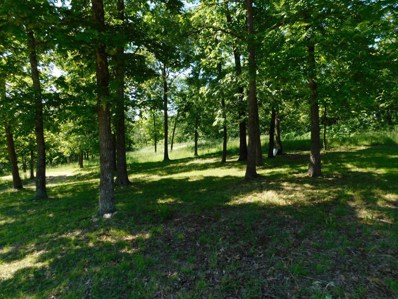 1288 Lucky Road, Mansfield, MO 65704 - MLS#: 60126697