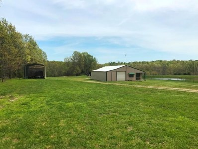 Box 2088  Private Road 2421, Mountain View, MO 65548 - MLS#: 60126969