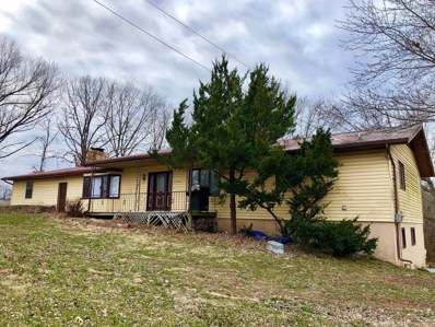 20863 State Hwy 413, Reeds Spring, MO 65737 - MLS#: 60127053