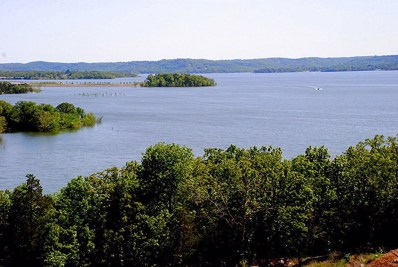 200 Majestic Drive UNIT 420, Branson, MO 65616 - MLS#: 60127711