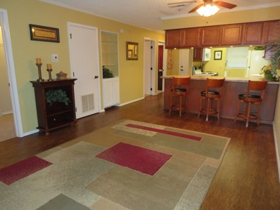 250 Berry Drive UNIT 1, Branson, MO 65616 - MLS#: 60128642