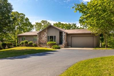299 Sunny Brook Drive, Branson, MO 65616 - MLS#: 60129020