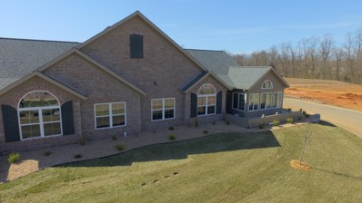 821 E Kings Mead Circle UNIT 3, Nixa, MO 65714 - MLS#: 60129417