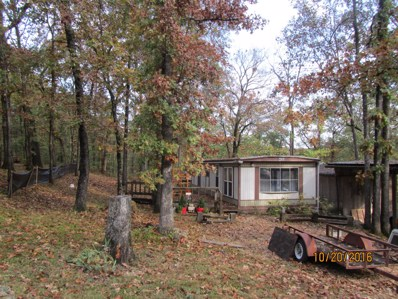 1010 Valley Road, Merriam Woods, MO 65740 - MLS#: 60129835