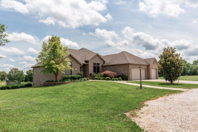 10390 W Jay Bee Lane, Republic, MO 65738 - MLS#: 60131310