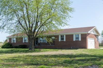 1950 N Maple Street, Buffalo, MO 65622 - MLS#: 60134442