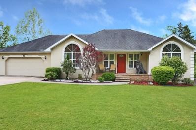 350 Green Briar Drive, Branson, MO 65616 - MLS#: 60135244