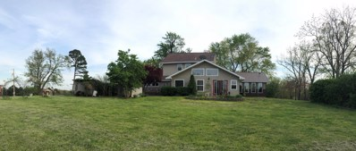 790 County Road 343, West Plains, MO 65775 - MLS#: 60135352