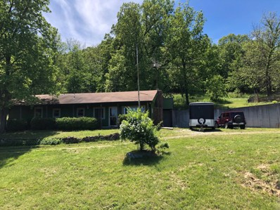 332 Tranquil Lane, Cape Fair, MO 65624 - MLS#: 60135358