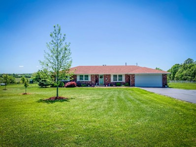 7036 E Farm Rd 164, Rogersville, MO 65742 - MLS#: 60137184