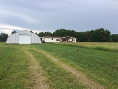 461 Sarvis Point Road, Seymour, MO 65746 - MLS#: 60138806