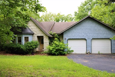 226 Country Hills Drive, Branson, MO 65616 - MLS#: 60139559
