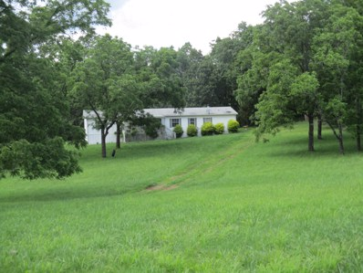 7813 County Road 3850, Peace Valley, MO 65788 - MLS#: 60139712