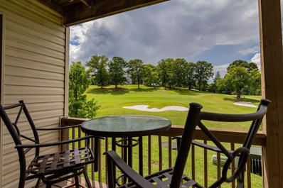 243 Clubhouse Drive UNIT 4, Branson, MO 65616 - MLS#: 60140523