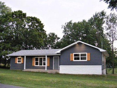 325 South Avenue, Sparta, MO 65753 - MLS#: 60140544