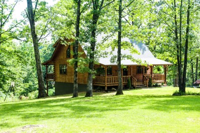 4040 County Road 6300, West Plains, MO 65775 - MLS#: 60140591