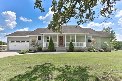 880 Riverview Road, Clever, MO 65631 - MLS#: 60141180