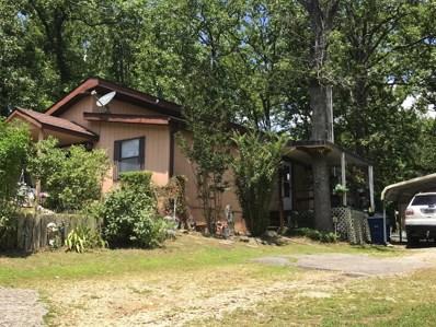 3005 Driftwood Road, Merriam Woods, MO 65740 - MLS#: 60141316