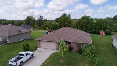 203 Dixie Avenue, Clever, MO 65631 - MLS#: 60142840