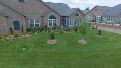 825 E Kings Mead Circle UNIT 3, Nixa, MO 65714 - MLS#: 60144204