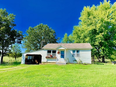 10819 County Road 9470, West Plains, MO 65775 - MLS#: 60145106